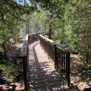 Boardwalk - Rockwood Conservation Area